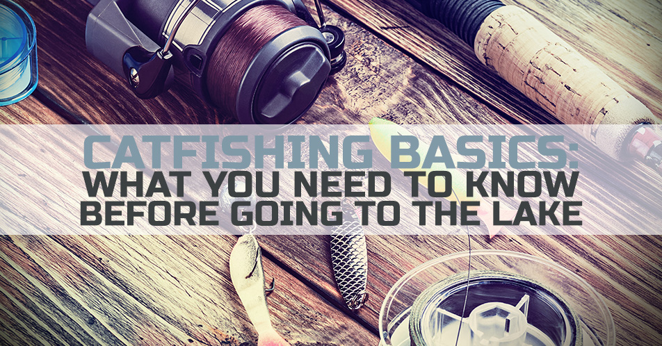 Catfishing Basics: What You Need to Know Before Going to the Lake
