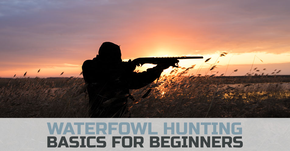 Waterfowl Hunting Basics for Beginners