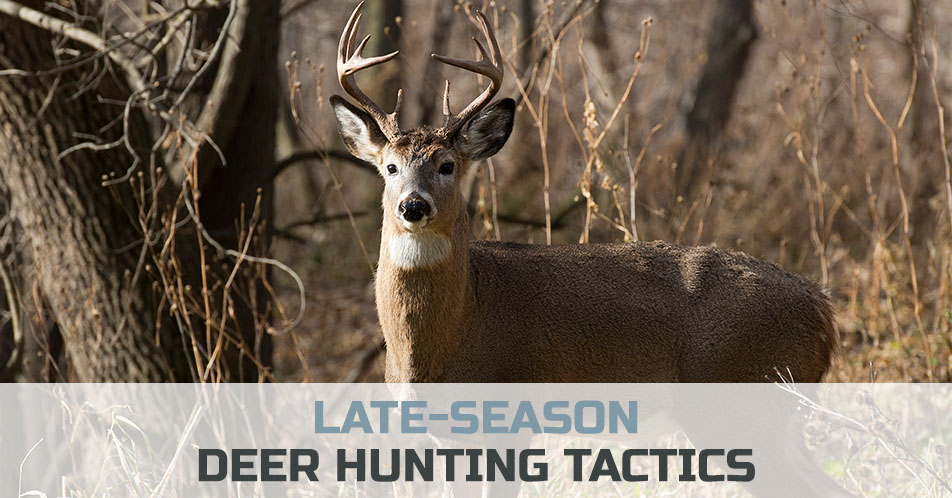 Late-Season Deer Hunting Tactics